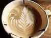 グリーンカフェ 小浜の町家を改装して作った雰囲気あふれるカフェ!スィーツおススメですよ!!